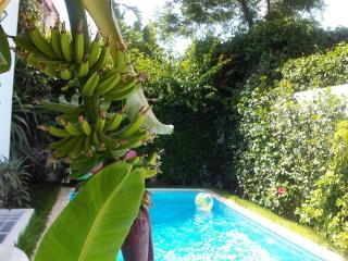 Ecrin de verdure à Casablanca - Casablanca vacation rentals