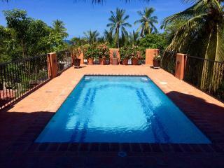 Casa Palmera - San Pancho vacation rentals
