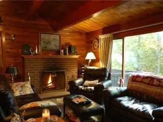 Cozy Cottage with Internet Access and DVD Player - Haliburton vacation rentals