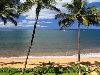 KIHEI BEACH, #402 - Kihei vacation rentals