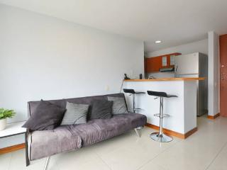 BosquePl 1101Modern w amazing view - Medellin vacation rentals