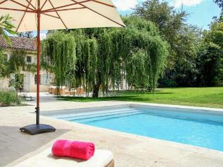 Beautiful House with Internet Access and Private Outdoor Pool - Labarthe vacation rentals