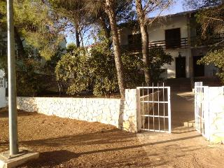 5724 A2 Gornji(6+1) - Stara Novalja - Stara Novalja vacation rentals