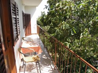 3 bedroom Apartment with Television in Vlasici - Vlasici vacation rentals