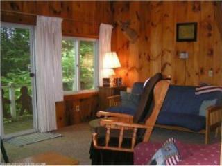 3 bedroom House with Deck in Norway - Norway vacation rentals