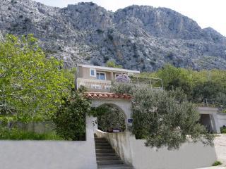 7923  A1(8+2) - Borak - Split-Dalmatia County vacation rentals