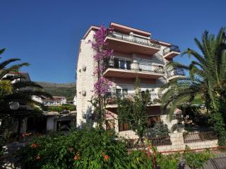 Nice 1 bedroom Condo in Podstrana - Podstrana vacation rentals
