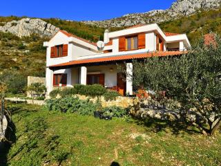 8196  H(8+2) - Kastel Kambelovac - Kastel Kambelovac vacation rentals