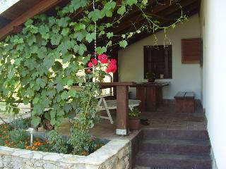 Nice House with Television and Stereo - Zaluznica vacation rentals