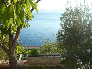 35507 SA2(2) - Pisak - Pisak vacation rentals