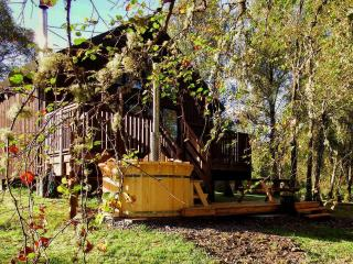 Lovely Cabin with Deck and Internet Access - Dalavich vacation rentals
