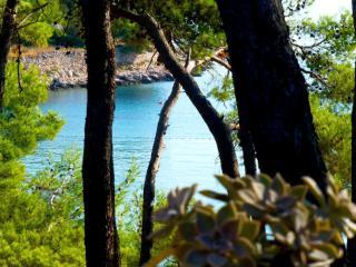 8016  A2(2+1) - Jelsa - Jelsa vacation rentals