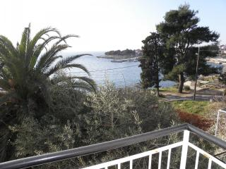 1 bedroom Apartment with A/C in Jakisnica - Jakisnica vacation rentals