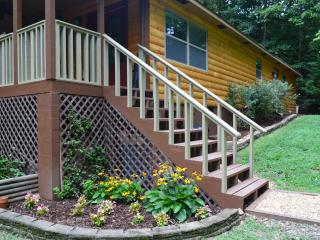 Cozy Cabin with Internet Access and A/C - Blairsville vacation rentals