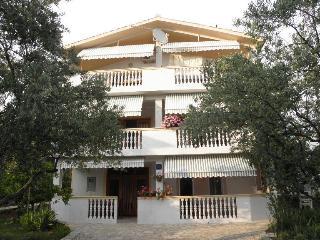 4763  A3-Bino(5) - Sveti Filip i Jakov - Sveti Filip i Jakov vacation rentals