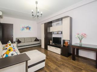 №36 Apartments in Moscow - Moscow vacation rentals