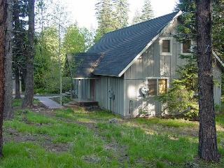 Hidden in the Pines of Spring Mountain Ranch - McCall vacation rentals