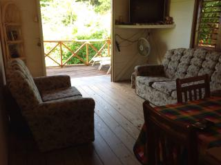 Beautiful Guest house with Balcony and Mountain Views - Castara vacation rentals