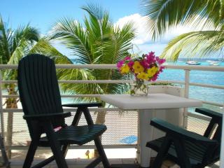 Nice 1 bedroom Condo in Marigot - Marigot vacation rentals