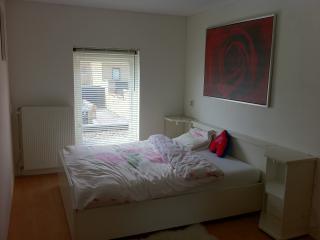 B&B in Hoofddorp, Schiphol Amsterdam - Hoofddorp vacation rentals