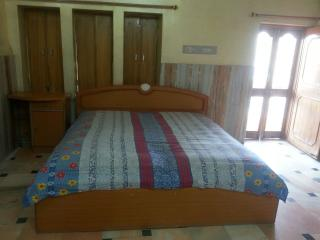 Furnished-City Center- Main Road Family Home - Jodhpur vacation rentals