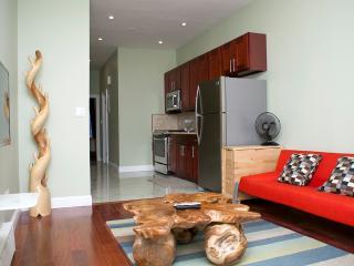Cozy 2 Bedrooms Apartment, Brooklyn - Brooklyn vacation rentals