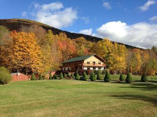 Euphoria Estate Sleeps 50 (can sleep up to 105) - Hunter vacation rentals