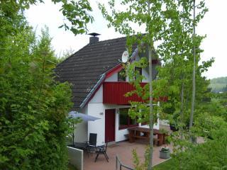 De perfecte lokatie voor een heerlijke vakantie - Kirchheim vacation rentals