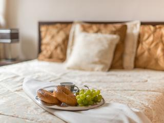 Comfortable 1 bedroom Warsaw Condo with Internet Access - Warsaw vacation rentals