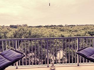 2bed/2.5bath luxury condo in resort - Ruskin vacation rentals