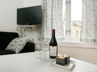 TV14-Great Value Apartment in hip GRUNERLØKKA! - Oslo vacation rentals