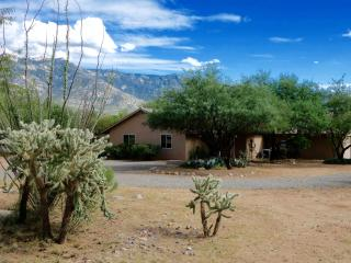 Gorgeous Mt.Views, pool/spa on 2 acres NEW LISTING - Tucson vacation rentals