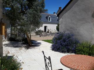 Nice B&B with Internet Access and Local Guides - Tauxigny vacation rentals