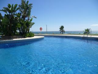 FRONT LINE BEACH APARTMENT - Sitio de Calahonda vacation rentals