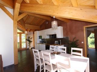 CHALET DES DOMAINES DE LA VANOISE - Apt Mont-Blanc - Peisey-Vallandry vacation rentals