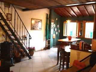 caratteristico appartamento toscano vicino Firenze - Figline Valdarno vacation rentals