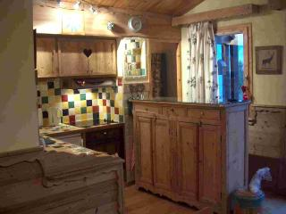 Courchevel 1550  - On the ski slopes - Courchevel vacation rentals