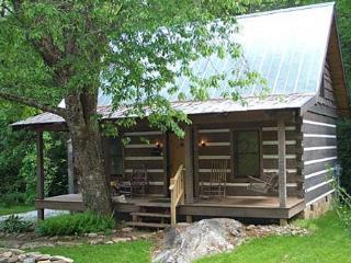 2 bedroom Cabin with Internet Access in Dillard - Dillard vacation rentals