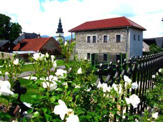 Apartment VILLA LYPCHE - upstairs apartment - Ruzomberok vacation rentals