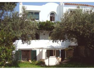 Villa Silvania tra Grotta Azzurra e AnaCapri - Capri vacation rentals