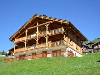 C6 REFUGE 2 bedrooms 4 people ref 073/034 3 rooms 4 persons 073/034 - Le Grand-Bornand vacation rentals
