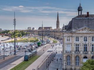 Luxury roomy apartment next to Place de la Bourse - Bordeaux vacation rentals