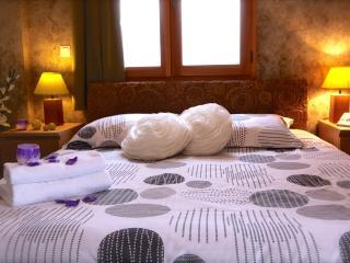 CHALET DES DOMAINES DE LA VANOISE - Apt BELLECÔTE - Peisey vacation rentals