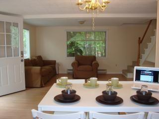 Pocono 4 bedroom House Free WiFi - Dingmans Ferry vacation rentals