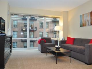 Chicago Loop Luxury One Bedroom - Chicago vacation rentals