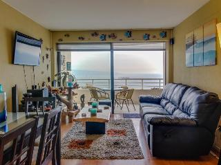 Gorgeous seaside condo with a shared pool! - Vina del Mar vacation rentals