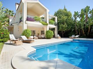 Villa Paraiso on the beach near Marbella - Estepona vacation rentals