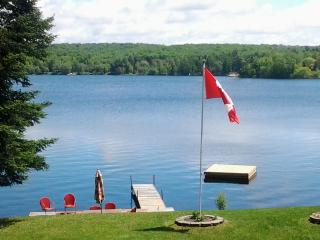Awesome Buck Lake Cottage - ATV-Sled-Relax-FUN! - Huntsville vacation rentals
