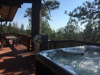 Scenic View - Idyllwild vacation rentals