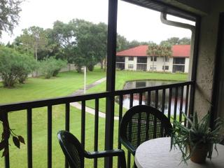 Shorewalk 202 - Bradenton vacation rentals